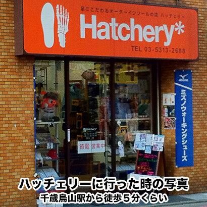 hatchery.jpg