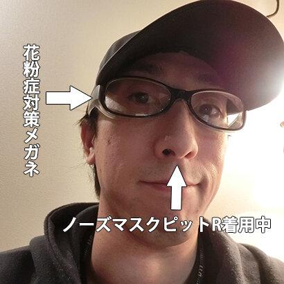 nosemask3.jpg